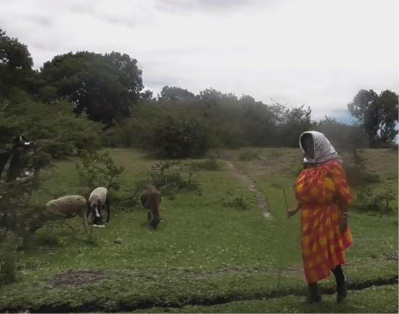 Obiskala je Kenijo in se preizkusila v njihovem načinu življenja
