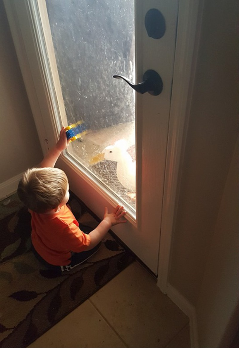 Raček je konstantno v dečkovi bližini. Pa čeprav so steklena vrata vmes.