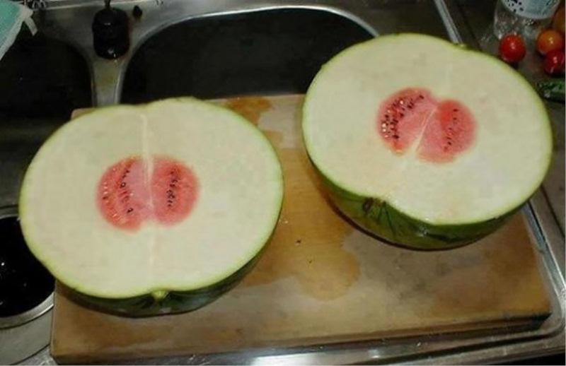 Le komu koristi takšna lubenica?